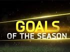 V�deo FIFA 15, Los Mejores Goles de la Temporada