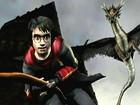 V�deo Harry Potter y el Cáliz de Fuego, Vídeo del juego 2