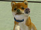 V�deo Nintendogs, Vídeo demostración 1