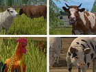 Imagen Farming Simulator Switch