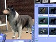 Vídeo oficial 1 (Los Sims 2 Mascotas)