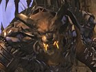 Vdeo Guild Wars 2: Raza Charr