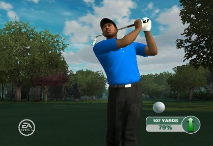 Tiger Woods PGA TOUR 09 (Nintendo Wii)