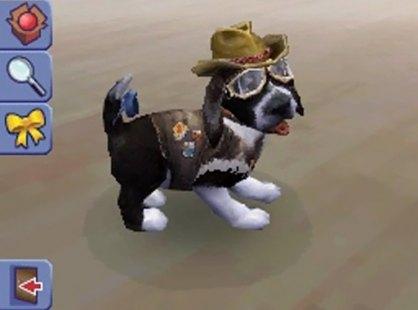 Los Sims 2 Vecinos y mascotas (Nintendo DS)
