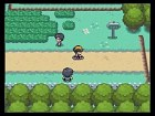 Imagen Pokémon HeartGold