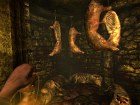 Imagen Amnesia: The Dark Descent (PC)