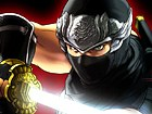 Ninja Gaiden (Nombre temporal)
