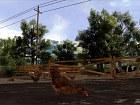 Imagen Agricultural Simulator 2011 (PC)