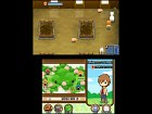 Imagen Harvest Moon: Tale of Two Towns (DS)