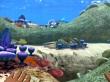 Gameplay: Los 10 primeros minutos (Subnautica)