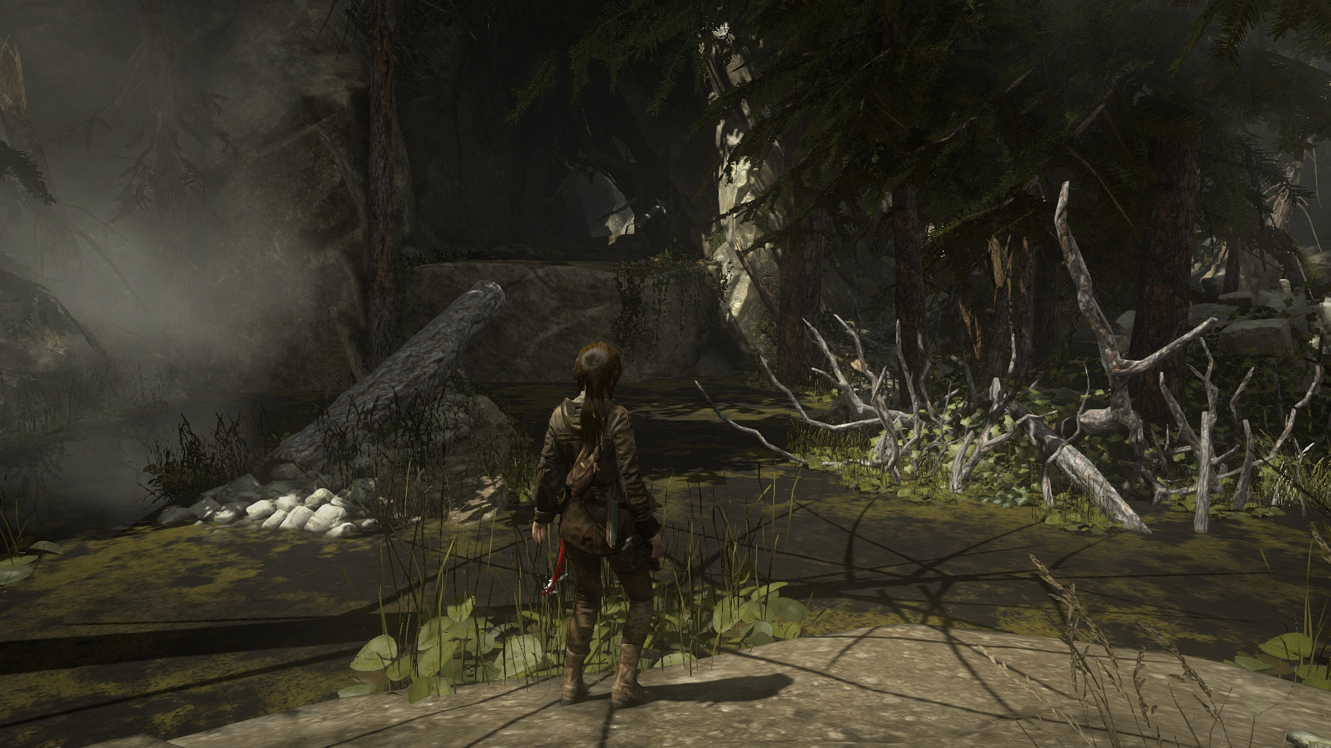 Imagen de Rise of the Tomb Raider