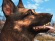 Se premiar� al mejor perro de videojuego del a�o: �Chop de GTA V, Alb�ndiga de Fallout 4 o D-Dog de Metal Gear Solid V?