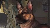 Video Fallout 4 - Albóndiga y Otros Compañeros