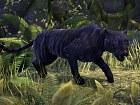 Imagen PC The Elder Scrolls Online