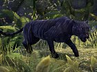 Imagen Xbox One The Elder Scrolls Online