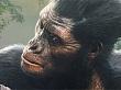 ¡Evolución! Nuevo vídeo a fondo de Ancestors: The Humankind Odyssey