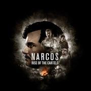 Carátula de Narcos: Rise of the Cartels - PS4