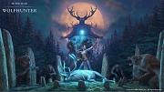 Carátula de The Elder Scrolls Online: Wolfhunter - PC