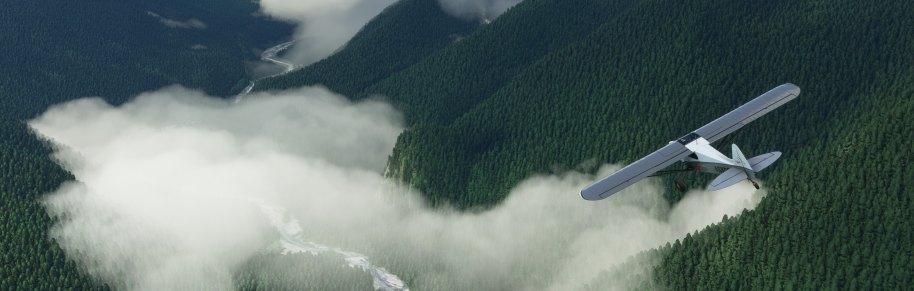 Flight Simulator PC
