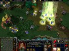 Pantalla Warcraft III: Reign of Chaos