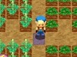 Vídeo del juego (Harvest Moon: La isla de la alegría)