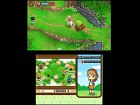Imagen DS Harvest Moon: Tale of Two Towns