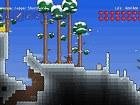 Imagen Terraria (PS3)