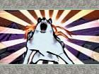 Imagen PS3 Okami HD